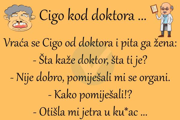 cigo2