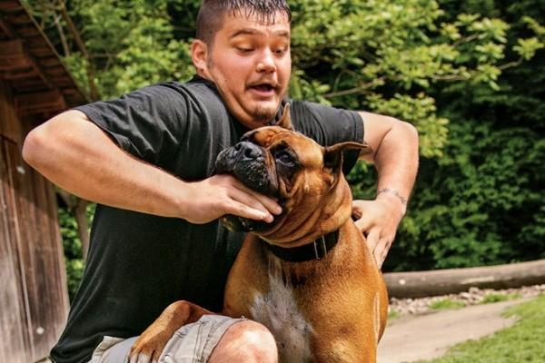 napad-psa