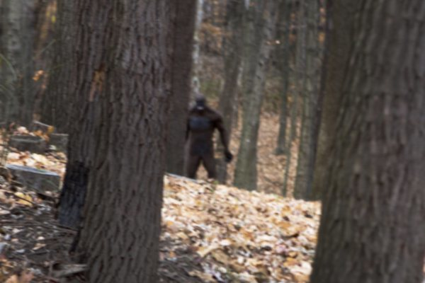 Bigfoot-Hiding