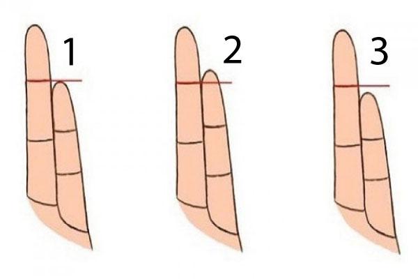 prsti11